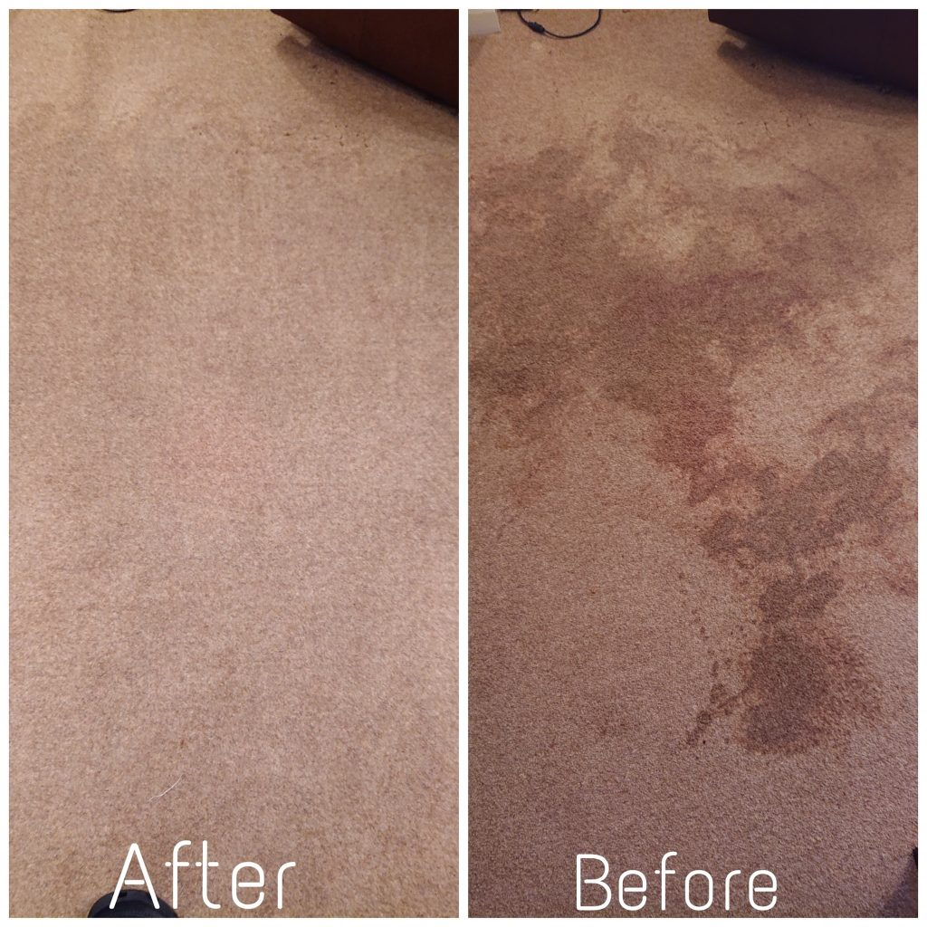 Rug Cleaning IOM - Rug cleaning experts on IOM